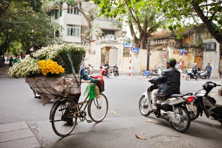 Hanoi flower cart - Jason Ward Studios